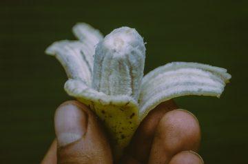 Banana Berry Sherbet