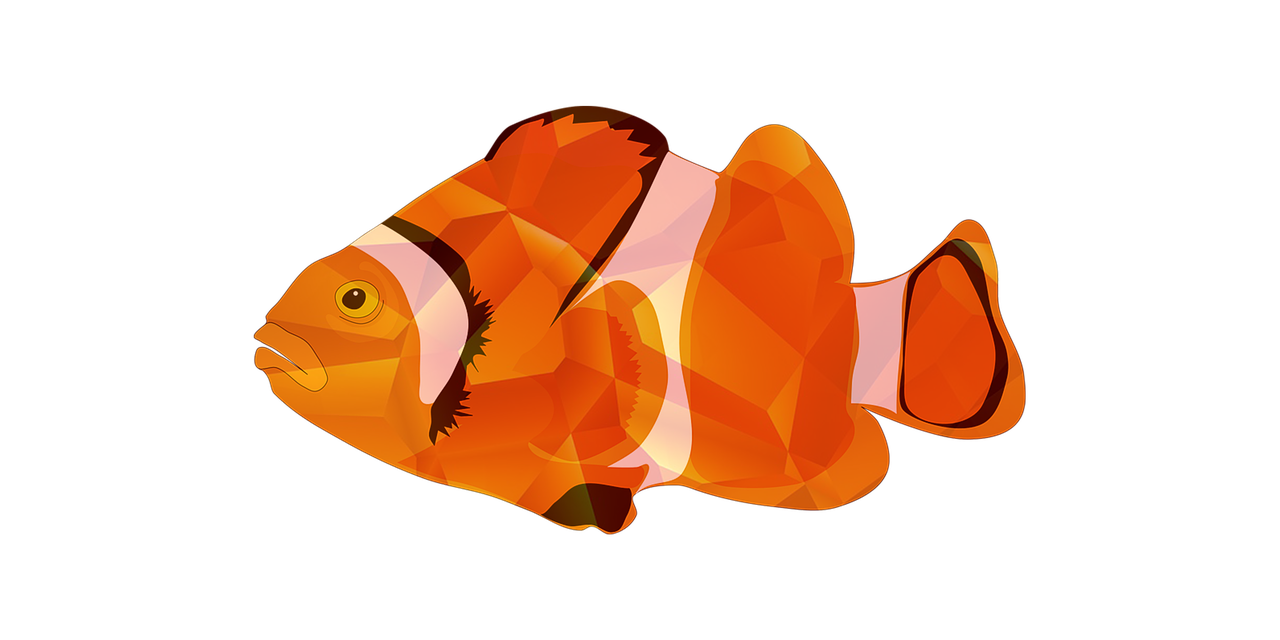 Bergie's Fish Filets