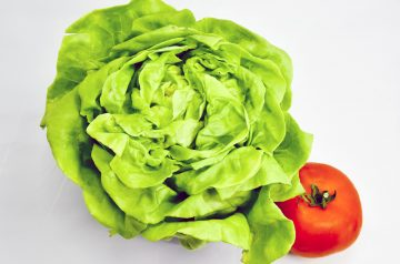 Butter Lettuce Salad With Candied Walnuts