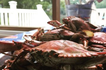 Chesapeake Crab Strata