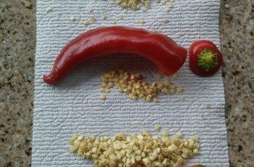 Chili Burritos