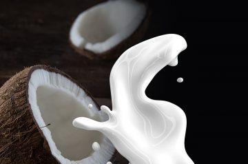 Banana Coconut- Milk Freeze (Dessert) Non-Dairy