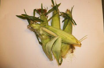 Hawaiian Corn