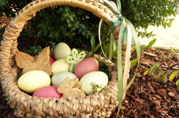 Greek Easter Cookies - Koulourakia