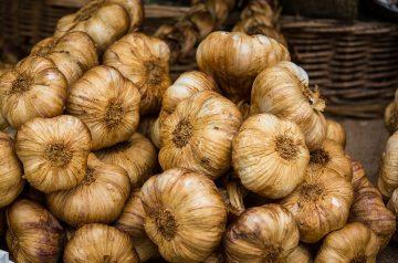 Easy Roasted Garlic Salsa Fresca