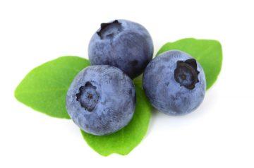 Fresh Blueberry Crisp