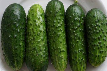 German Creamed Cucumbers