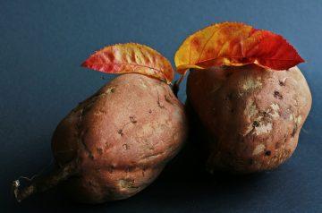 Grandma's Sweet Potato Dish