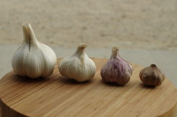 Greek Death by Garlic Pasta