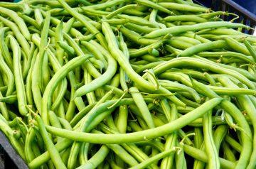 Green String Bean Soup