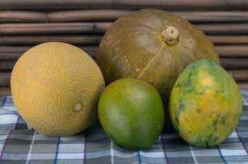 Melon-Mango Sorbet