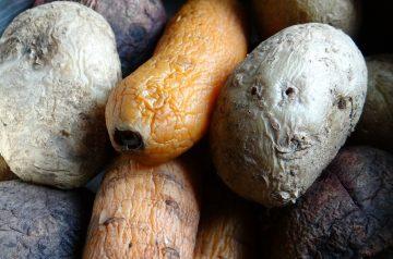 New Potatoes with Vinaigrette