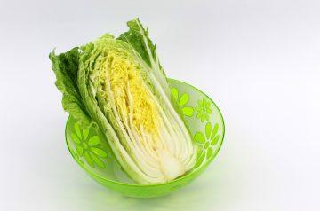 Oriental Green Cabbage Salad