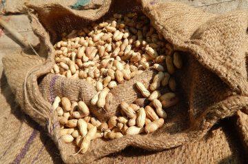 Kulikuli (Peanut Balls)