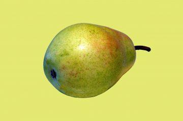Pleasing Pear Pie