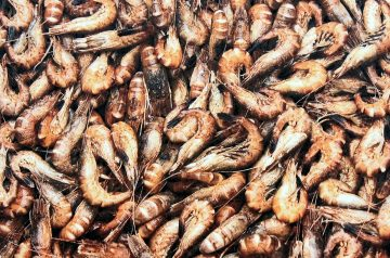 Shrimp and Crab Gazpacho