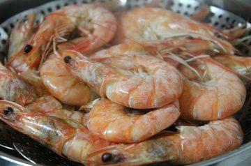 South Seas Shrimp and Mango