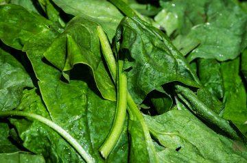 Tofu and Spinach Vegetarian Lasagna (Oamc)