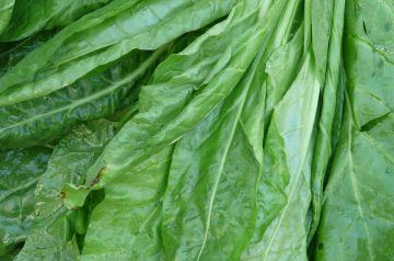 Spinach Garnish