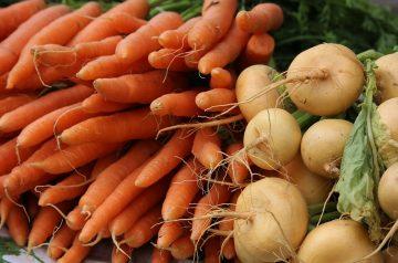 Turnip and Carrot Mash