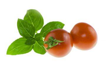 Tomato Basil Strata