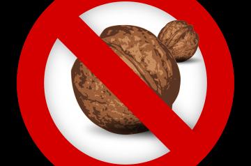 Maple Oat Nut Scones - Starbucks