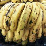Yummy, Scrummy Banana Shake