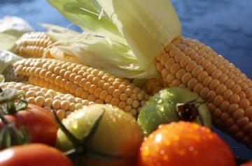 Corn and Tomatoes Tart