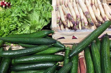 Japanese Style Cucumber and Radish Salad