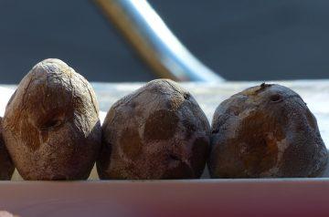 Potato Omelet (Torta De Papas)